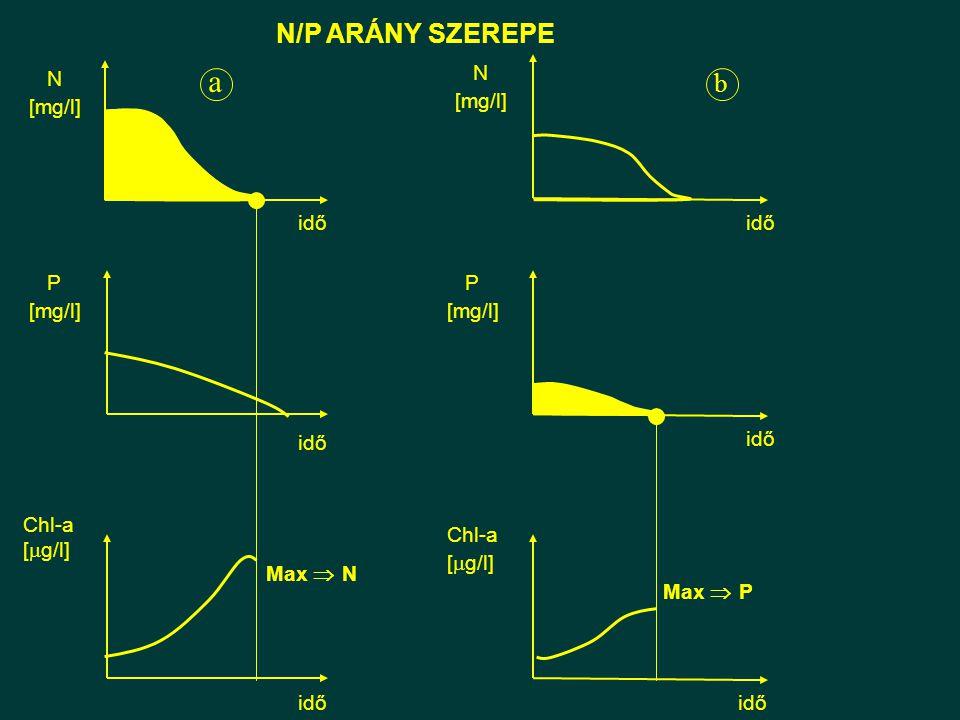 a N/P ARÁNY SZEREPE b P [mg/l] idő N N [mg/l] P idő Chl-a [g/l] idő